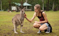 Touching the kangaroo