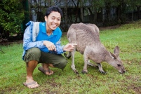 Make a photo with Kangaroo in Lone Pine Koala Sanctuary