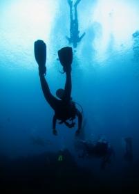 Ship Wreck Tulamben